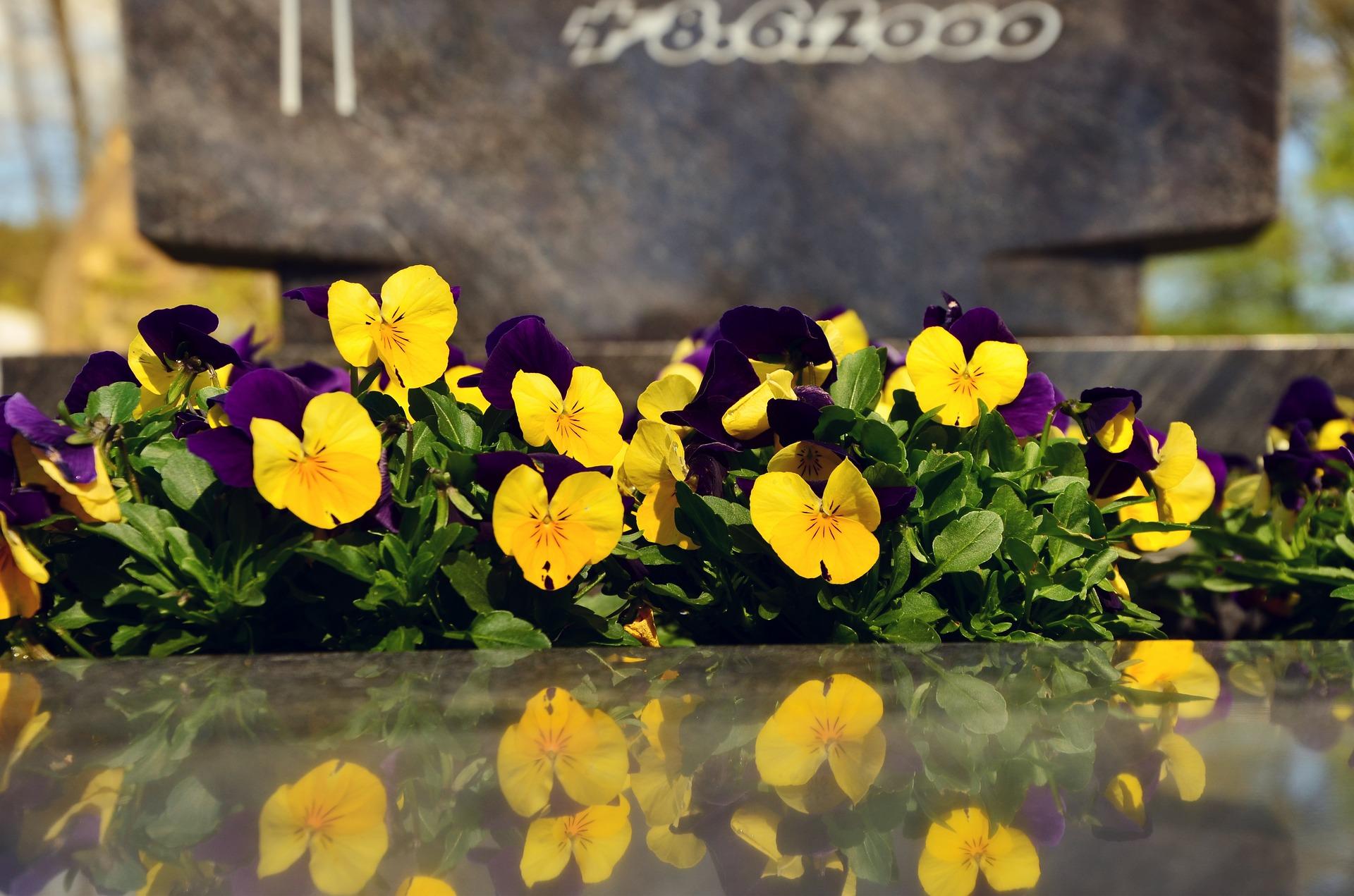 grave-3184969_1920